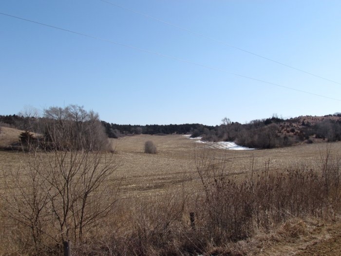 157.82 Acre(s) Hunting Land, Tillable Farmland, Acreage, and Farm Equipment Auction - Land all 1 Tract Monona County